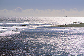Malibu Surfers, Los Angeles County, California (LA)