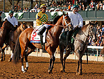 April 06, 2019: Chess Chief in the Blue Grass Stakes at Keeneland Racecourse in Lexington, KY on April 06, 2019.  Candice Chavez/ESW/CSM