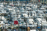 Boats docked in marina, Cape May, New Jersey, USA