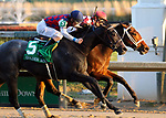 November 24, 2018 : Liora (jockey Channing Hill, inside #6) wins the 75th running of the G2 Golden Rod at Churchill Downs, Louisville, Kentucky. Owner Coffeepot Stables (Bob Cummings and Annette Bacola), trainer Wayne M. Catalano. By Candy Ride x Giant Mover (Giant's Causeway) Restless Rider (jockey Brian J. Hernandez Jr., #5) was second. Mary M. Meek/ESW/CSM