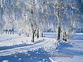 Marek, CHRISTMAS LANDSCAPES, WEIHNACHTEN WINTERLANDSCHAFTEN, NAVIDAD PAISAJES DE INVIERNO, photos+++++,PLMP0427Z,#xl#