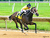 Estilo Femenino winning at Delaware Park on 7/5/17