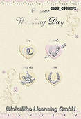 Sharon, WEDDING, HOCHZEIT, BODA,rings,hearts,dove,horseshoe paintings+++++,GBSSC50WEF1,#W#, EVERYDAY