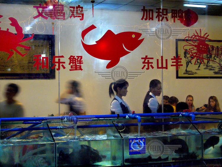 Seafood restaurant in Sanya.