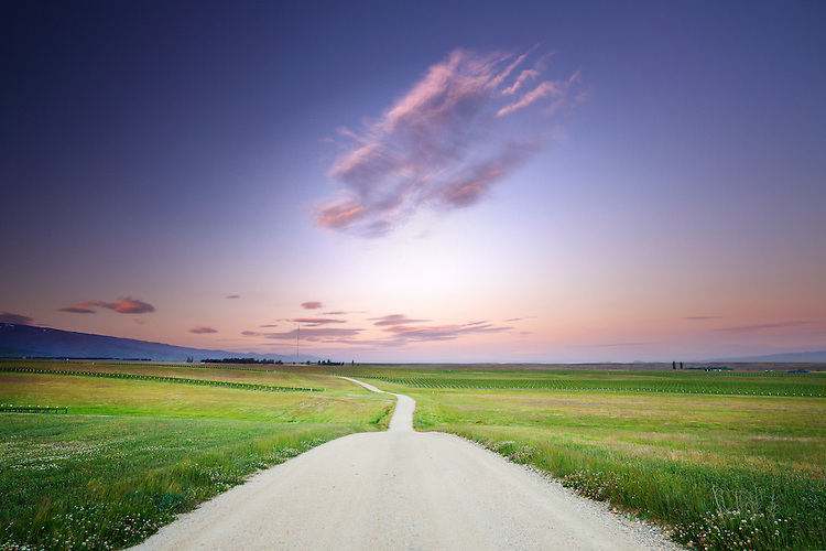 Gravel road with soft pink sky, Central Otago, South Island, New Zealand - stock photo, canvas, fine art print