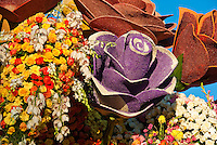 Pasadena Rose Parade Floats 2010