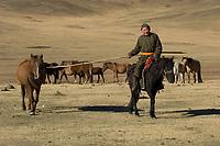 Nomads herding cattle
