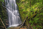 Berry Creek Falls, Big Basin State Park, Santa Cruz County, California