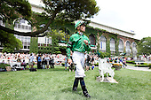 Jockeys enter paddock for 5th race