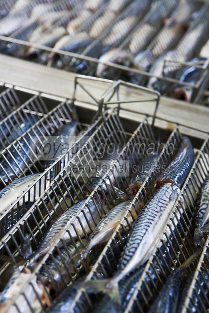 """Europe/France/Bretagne/29/Finistère/Concarneau: Conserverie de sardines Gonidec - marque commerciale Les Mouettes  d'Arvor"""""""