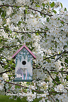 01715-03011 Bird nestbox in blooming Sugartyme Crabapple Tree (Malus sp.) Marion Co., IL