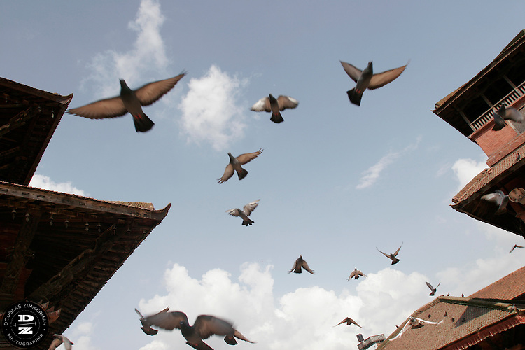 Pigeons fly over the temples and monuments of Patan's Durbar Square in Patan, Nepal.  Photograph by Douglas ZImmerman