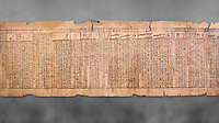 "Ancient Egyptian Book of the Dead papyrus - Spell 33 for keeping snakes away, Iufankh's Book of the Dead, Ptolomaic period (332-30BC).Turin Egyptian Museum. Grey Background<br /> <br /> the spell reads ' O Rerek! Move not! Behold Geb and Shu have risen against you, for you have eaten a mouse, the abomination of Re"" you have crunched the bones of a putrified cat""<br /> <br /> The translation of  Iuefankh's Book of the Dead papyrus by Richard Lepsius marked a truning point in the studies of ancient Egyptian funereal studies."