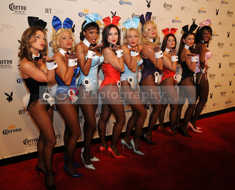 """Playboy playmates pose at Playboy's ninth annual """"Super Saturday Night""""  party in at Playboy's Desert Oasis and Resort in Chandler, Arizona Saturday February 2, 2008.   (Photo by Alan Greth)"""