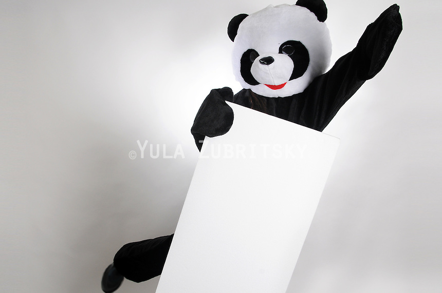 Purim Jewish holiday costume<br /> Panda bear with white empty sign<br /> Copy space