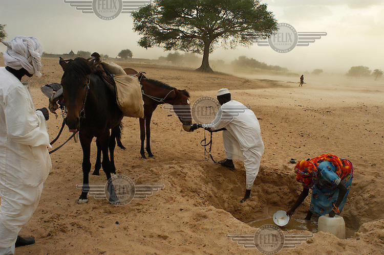 Refugees collect water for themselves and their horses by digging a hole in the dry river bed. Thousands of refugees from Darfur province in Sudan have fled to Chad to escape attacks by Arab militias allied to the Sudanese government.