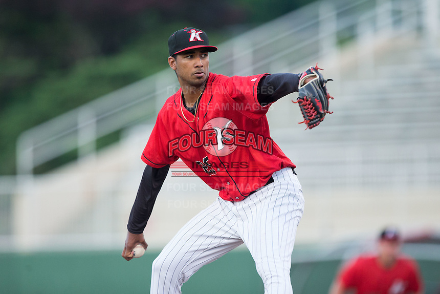 Kannapolis Intimidators starting pitcher Luis Martinez (29) in action against the Asheville Tourists at Kannapolis Intimidators Stadium on May 26, 2016 in Kannapolis, North Carolina.  The Tourists defeated the Intimidators 9-6 in 11 innings.  (Brian Westerholt/Four Seam Images)