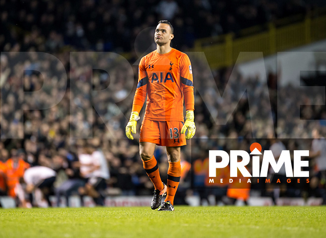 Goalkeeper Michel Vorm of Tottenham Hotspur looks relieved after Son Heung-Min of Tottenham Hotspur scores the winning goal during the FA Cup 4th round match between Tottenham Hotspur and Wycombe Wanderers at White Hart Lane, London, England on the 28th January 2017. Photo by Liam McAvoy.