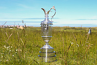 The Amateur Championship 2014