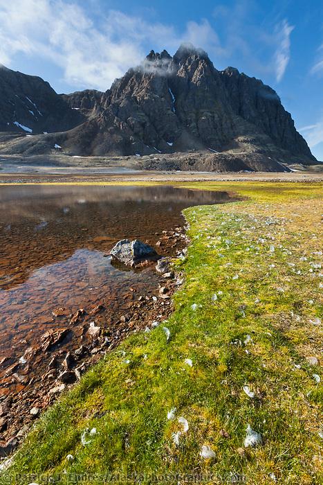 Fuglehuken, Svalbard