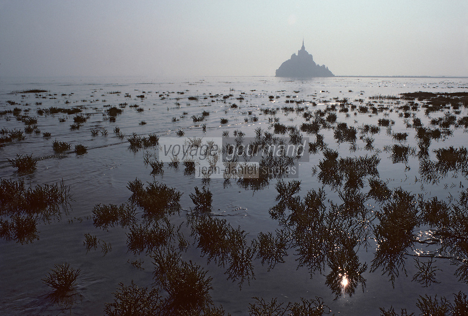 Europe/France/Normandie/Basse-Normandie/50/Manche: La baie et le Mont Saint-Michel