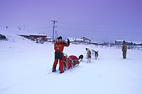 Jeff King Arriving in Kaltag Iditarod AK 99