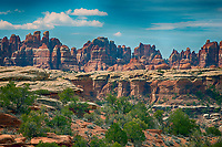 March 14, 2018: The iconic Needles spires overlook the juniper/pinyons of The Needles District, Canyonlands National Park, Utah.