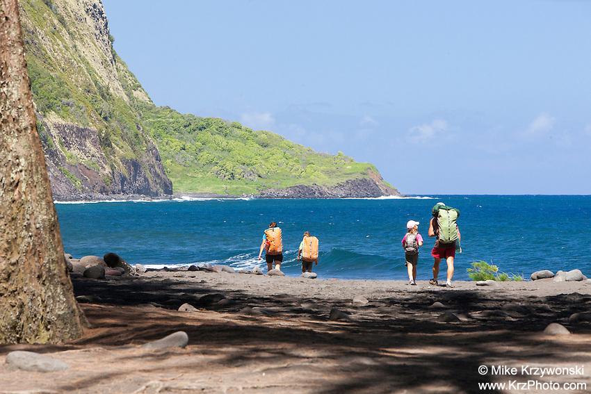 Family hiking w/ backpacks along the beach in Waipio Valley, Big Island, Hawaii