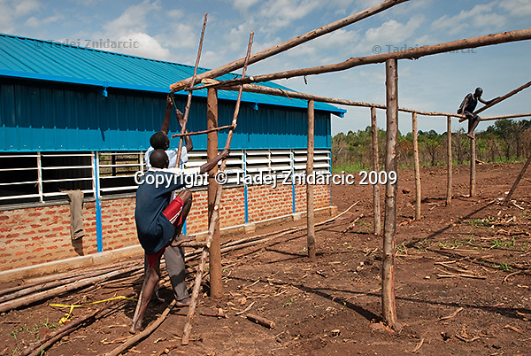 Building of a shed that children attending nursery school will use during meals. Nursery was built in 2009 by Canadian NGO Project Shelter Wakadogo in Acoyo village, Koro Subcounty, Gulu District.