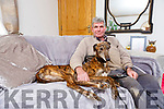 Retired Greyhound Shronedraugh Hawk relaxes by watching some TV with Tim Kelly at home in Barradubh on Tuesday