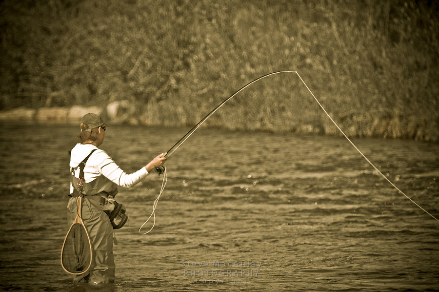 Fly fishing on the Yampa River, Steamboat Springs, CO.