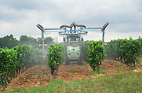 Spraying with a tractor in the vineyard. Chateau de France, Pessac Leognan, Graves, Bordeaux, France