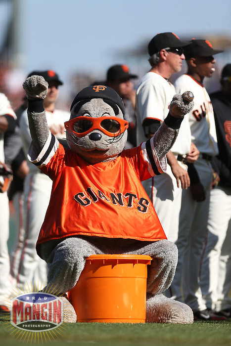 SAN FRANCISCO - SEPTEMBER 27:  Mascot Lou Seal of the San Francisco Giants celebrates after the game against the Arizona Diamondbacks at AT&T Park on September 27, 2012 in San Francisco, California. (Photo by Brad Mangin)