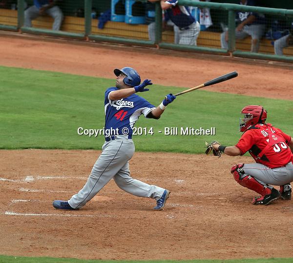 Tyler Ogle - 2014 AIL AIL Dodgers (Bill Mitchell)