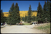 Scene showing yellow aspen trees on hillside. With road & pines in foreground.