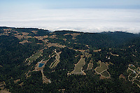 Aerial photograph Seaview Estate Vineyard Peter Michael Winery Sonoma Coast Pinot Noir vineyards