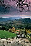 Kuleto Estate Winery, above Highway 128, Napa County, California