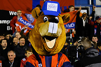 Hampton mascot Bertie the Beaver during Hampton & Richmond Borough vs Oldham Athletic, Emirates FA Cup Football at the Beveree Stadium on 12th November 2018