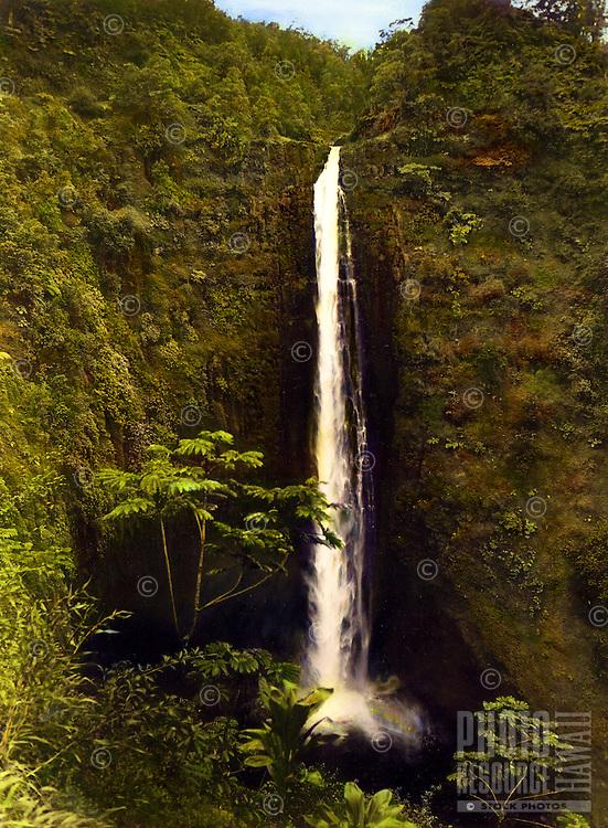 Hand-tinted photo of Akaka falls, the states longest waterfall, north of Hilo on the Big Island of Hawaii