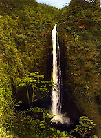 Hand-tinted photo of Akaka falls, the states longest waterfall, north of Hilo on the Big Island of Hawaii