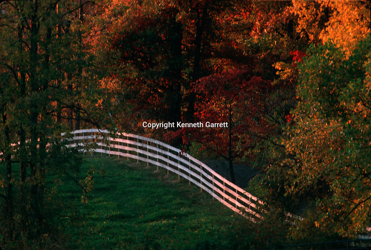 Virginia; Fauquier County; Hallowed Ground; Marshall, fences,fall colors