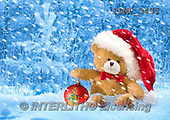 Marek, CHRISTMAS ANIMALS, WEIHNACHTEN TIERE, NAVIDAD ANIMALES, teddies, photos+++++,PLMP3435,#Xa# in snow,outsite,