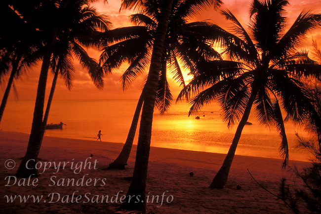 Sunset through the Palm Trees, Aitutaki Lagoon,  Cook Islands in the South Pacific.