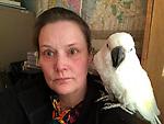 parrot 22