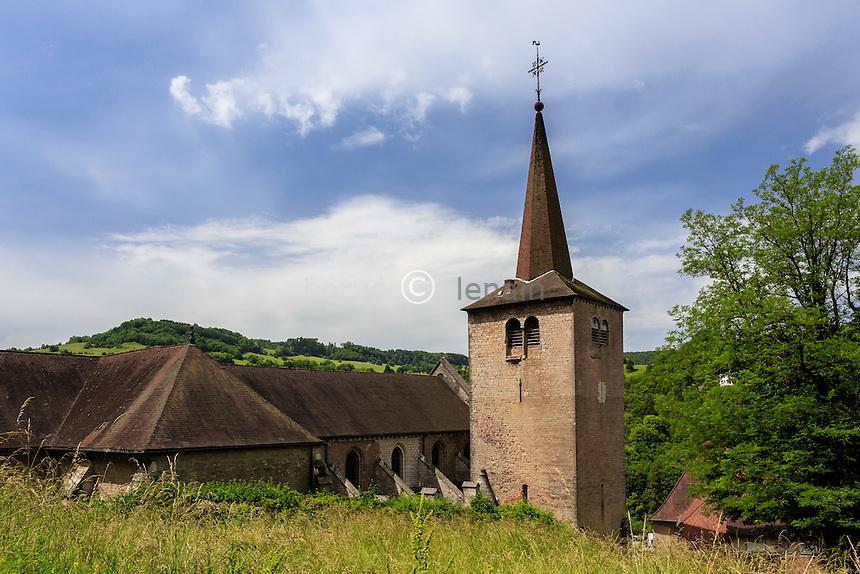 France, Jura (39), Salins-les-Bains, colégiale Saint-Anatoile