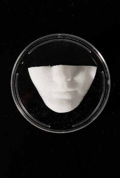 February 11, 2015. Winston Salem, North Carolina.<br />  Using 3D printers, the Wake Forest Institute for Regenerative Medicine creates scaffolds of body parts, such as this lower face model. In the future, living cells will be introduced onto the scaffolds, allowing them to become transplantable body parts.<br />  Anthony Atala, M.D., is the Director of the Wake Forest Institute for Regenerative Medicine. Dr. Atala is a pioneer in the use of 3D printing in the area of regenerative medicine, focusing on growing new human cells, tissues and organs.
