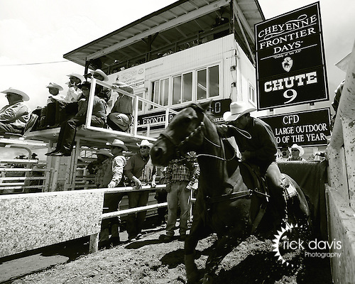 The annual Cheyenne Frontier Days Rodeo in Cheyenne, Wyoming has a rich tradition amongst Professional Rodeo Cowboy Association timed event contestants. Chute 9 boasts a 30 foot score line, which gives stock a significant advantage in the 700 foot long arena. Cowboys reign their horses back at the release of the stock, then spur on their quarter horse to make up the ground.