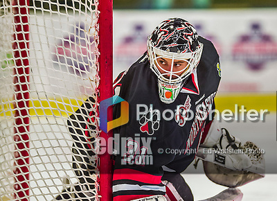 17 December 2013:  Northeastern University Huskies Goaltender Clay Witt, a Redshirt Junior from Brandon, FL, in second period action against the University of Vermont Catamounts at Gutterson Fieldhouse in Burlington, Vermont. Witt recorded a shut out as the Huskies defeated the Catamounts 3-0 to end UVM's 5 game winning streak. Mandatory Credit: Ed Wolfstein Photo *** RAW (NEF) Image File Available ***
