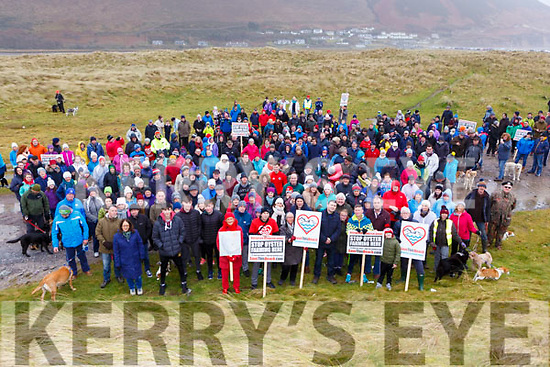 The large crowd  protesting to Oyster farming at Rossbeigh beach on Sunday