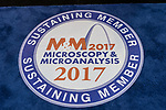 M&M: Microscopy Society of America 2017